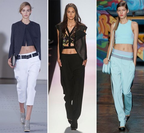 spring_summer_2014_fashion_trends_cropped_tops_fashionisers1-480x444