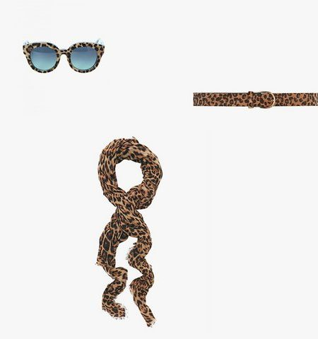leopard printed scarf belt glasses